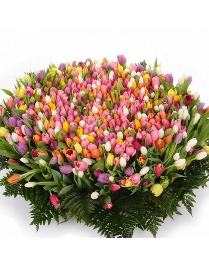для шикарные букеты из живых тюльпанов фото можем бесплатно подрезать